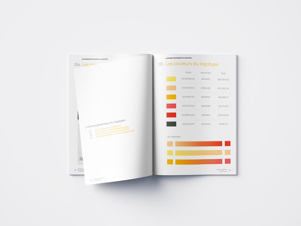 Charte graphique Projet Celsius